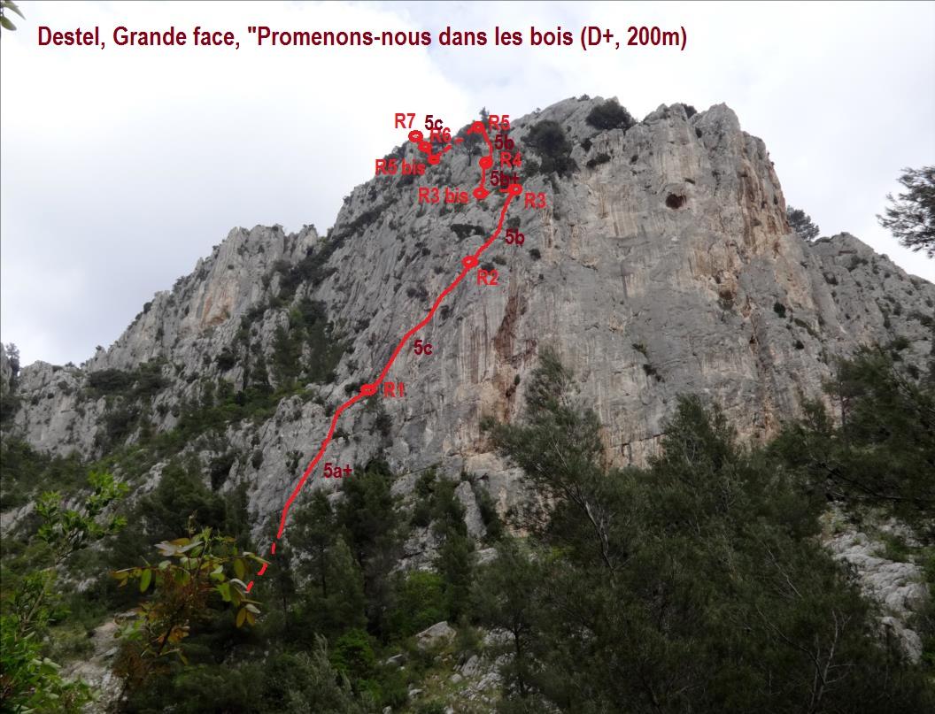 Gorges du Destel vers Toulon, `Promenons-nous dans les bois`