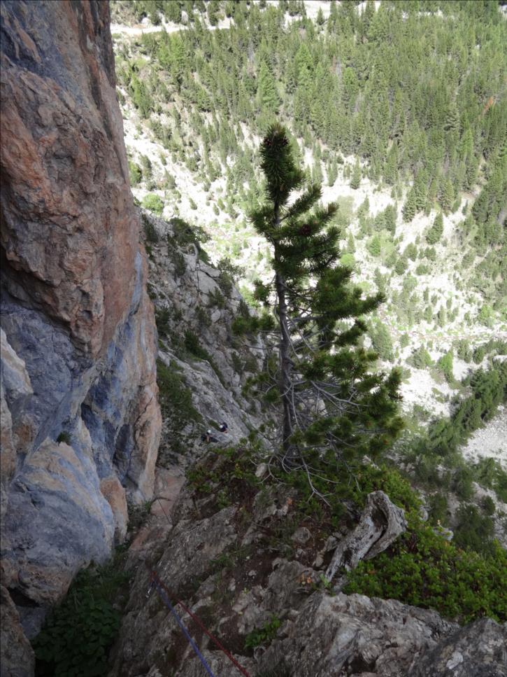 Combe la roche, L6 de la voie Anopham, Queyras